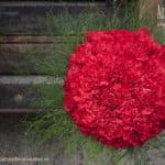 ramo novia de claveles rojos