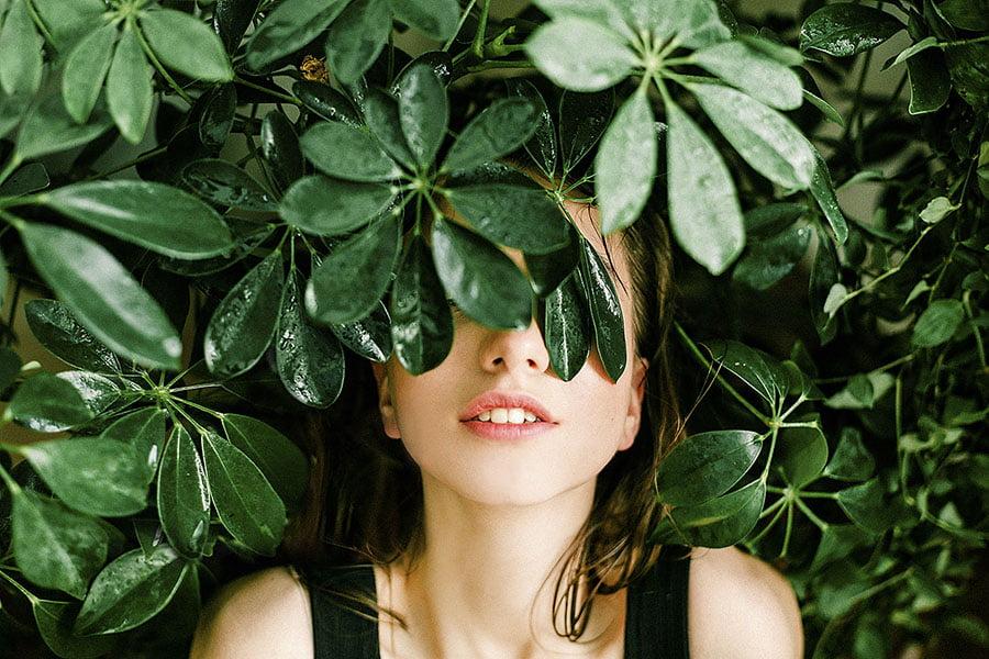 Plantas antiestrés. Beneficios en las personas y purificación del aire.