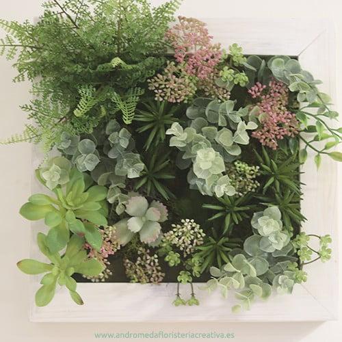 cuadro de plantas